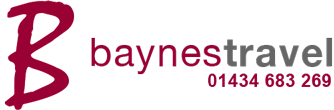 baynes travel logo